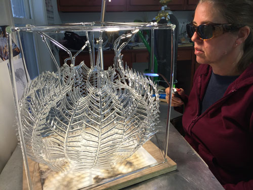 Creating a Glass Feather Star