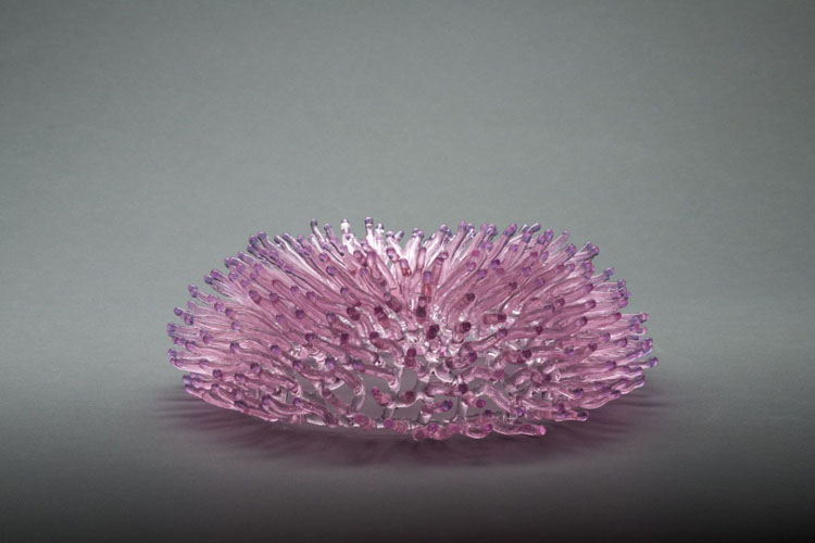 glass pink plate coral detail